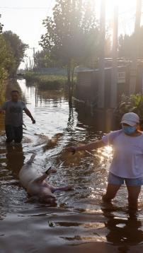 Chinese farmers see livelihoods washed away by floods